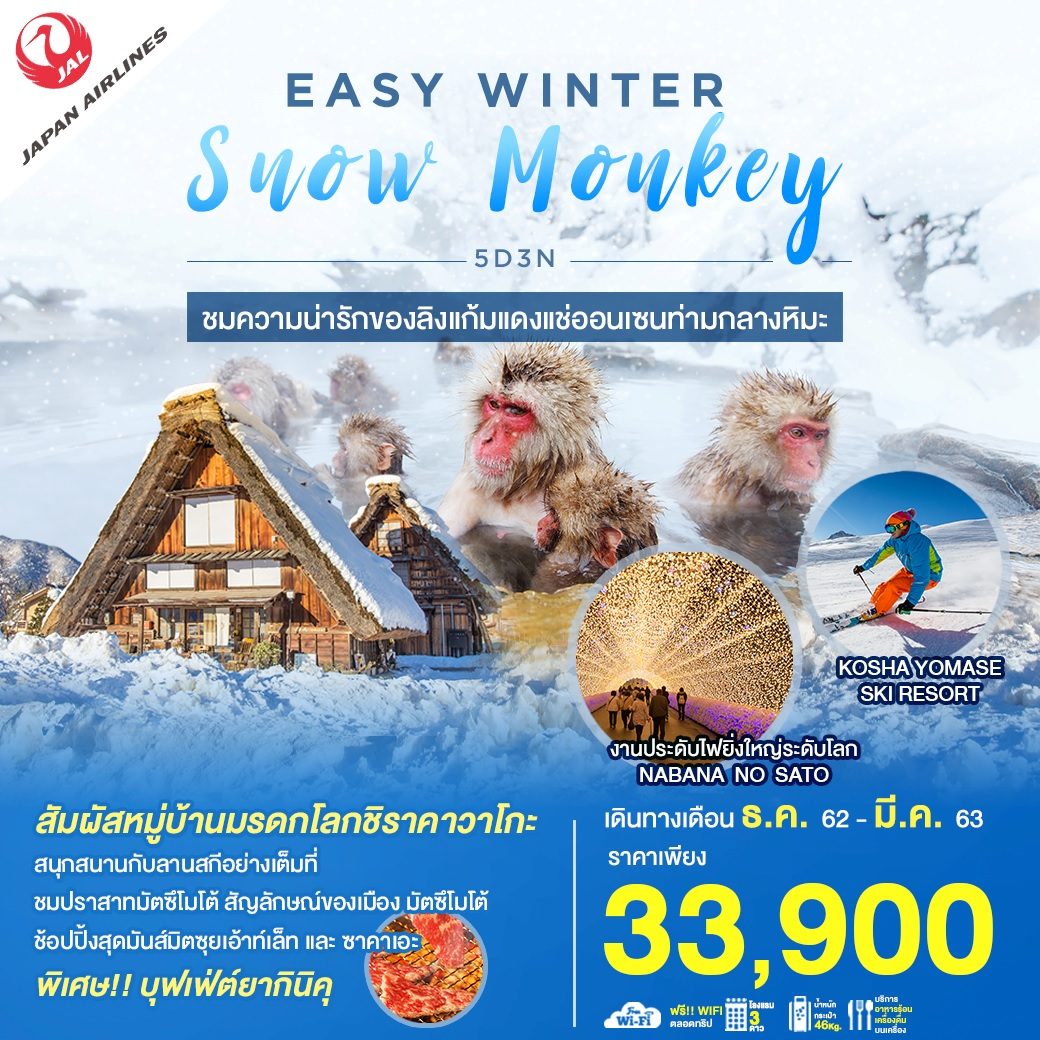 EASY WINTER SNOW MONKEY 5D3N JL (DEC-MAR20)